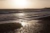 Año Nuevo State Park-7998 (马嘉因 / Jiayin Ma) Tags: california park beach water 1 sand state wave route año ano nuevo seaocean
