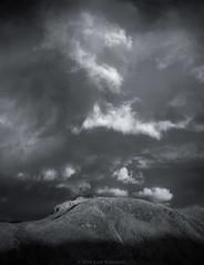 Meall an t-Suidhe & Ben Nevis. (Roksoff) Tags: trees winter snow cold ice hail pine scotland log wind bennevis fortwilliam lochaber scottishhighlands glennevis scotspine leefilters rivernevis meallantsuidhe nikond810 1635mmf4 steallgorge