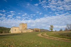 Chteau d'Arques (-dangler) Tags: old travel trees france green tower castle tourism weather clouds rural landscape outside outdoors ruins europe day country scenic sunny roadtrip historic adventure daytime dirtroad blueskies partlycloudy arques dandangler chteaudarques