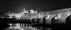 Classis POV on the Roman Bridge (Oguzhan Amsterdam) Tags: bridge bw white black monochrome night photography mono spain roman espana cordoba andalusia oguzhan