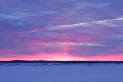 DSCF6020 (kpatrikeev) Tags: morning winter sky snow nature clouds sunrise landscape siberia irkutsk