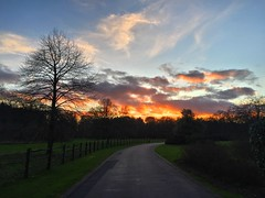 Fiery Sunset (Marc Sayce) Tags: park sunset england forest downs tramonto sundown forestry alice south hampshire surrey lodge national holt commission fiery farnham coucherdusoleil sdnp