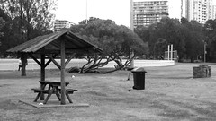 """Barbecue area """"Cahill Park"""" at - Wolli Creek NSW - 2016 (BW) (nicephotog) Tags: park urban playing bird field sport creek garden table picnic seat sydney ibis barbecue nsw recreation oval cahill wicket wolli"""