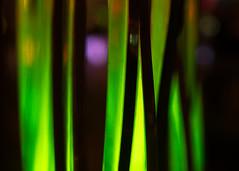 grass (Cosimo Matteini) Tags: light england london grass pen fence olympus lumiere leicestersquare lightfestival m43 mft ep5 cosimomatteini mzuiko45mmf18