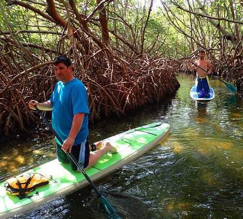 3_5_16 Kayak Paddleboard Tour Sarasota FL 10