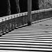 Shadow Walkway, North Carolina Arboretum (Asheville, North Carolina)