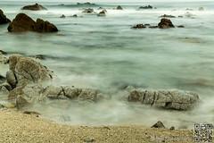 Sea of mist (EyeCandy42) Tags: ocean monterey pointpinos rockyshore