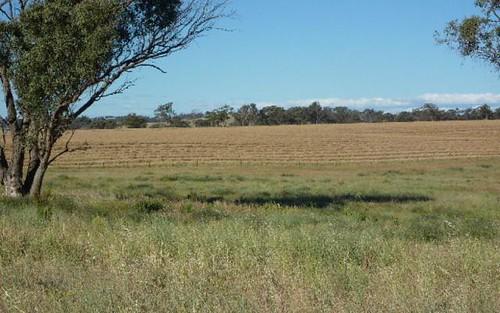 Lot 5, Whiteleys Road, Molong NSW
