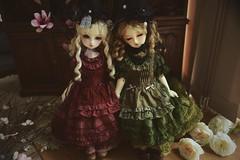 Dear SD Una and SWD  Nana (PNBdolls) Tags: ball eyes doll dolls sd una nana bjd superdollfie volks swd fcs balljointeddoll f01 dsd faceup dollflower dearsd