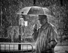 It's wet! (Just Ard) Tags: street people blackandwhite bw white man black blancoynegro water monochrome face rain umbrella person photography mono glasses nikon noiretblanc zwartwit candid 85mm d750 shelter unposed spectacles  biancoenero downpour schwarzundweis justard