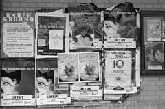 FS 160417_160413_0024bw (larseriksfoto) Tags: lund yoga den ann raya iq sista affischer mejeriet stadsparken anekdoten bokstaver heberlein tsaren fotosondag dmctz70 dmczs50 fs160417