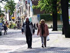 EU2006 088 (harry de haan) Tags: holland netherlands europe eu voorburg 070 harrydehaan