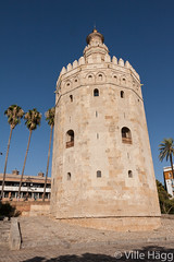Torre del Oro (villeah) Tags: architecture sevilla andaluca spain seville palm es watchtower torredeloro