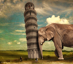 Strong As ... (rubyblossom.) Tags: people elephant tower buildings watching structures push sr leaning challenge piza leaningtowerofpisa no4 2016 trong rubyblossom rubystreasures angiesanimalantics