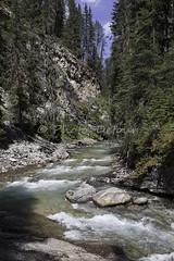 J-500810-336 (Mireille & Jacky Weiland Photography) Tags: canada nationalpark alberta banff pays watertonlakes redcanyon johnstoncanyon