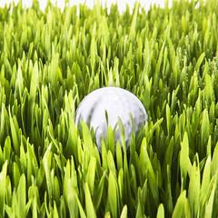 Torza's Golf (Torza's Golf) Tags: plants green sports grass ball golf outdoors lawn nobody fresh growth copyspace landforms naturalworld golfball purity sportsequipment singleobject golfequipment