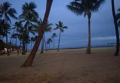 Waikiki Beach (JonathanWolfson) Tags: beach waikiki palmtrees waikikibeach
