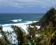 DSC_5400 e5 (J Telljohann) Tags: hawaii maui hookipa
