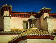 Roof lines (Colormaniac too) Tags: roof plants detail building home lines closeup architecture outside spain weeds moorish granada quarter andalusia turret persistence albayzin