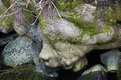 A Face in the trunk. (artanglerPD) Tags: tree face moss stones trunk