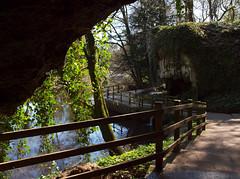 2016_04_0162 (petermit2) Tags: yorkshire well cave knaresborough northyorkshire mothershipton petrifyingwell petrifying mothershiptonscave