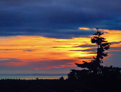 Glory (Colormaniac too) Tags: morning color colour colors sunrise dawn washington colorful colours state pacific northwest sequim textures glorious colourful olympic peninsula distressed daybreak