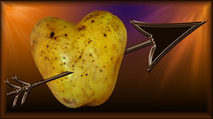 The Hearty Potato (Thanks to everyone for comments and favs) Tags: food orange metal purple heart meta potato arrow