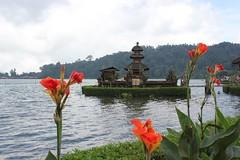 Petit temple sur le lac (GeckoZen) Tags: bali fleurs indonesia temple lac bedugul