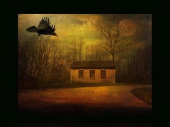 The Wood (jimlaskowicz) Tags: wood moon house painterly mystery night evening moody artistic border surreal raven poe textured