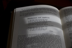 Bokstver / Letters (slogg) Tags: reading book letters sunbeams lsa bokstaver fotosondag fs160417