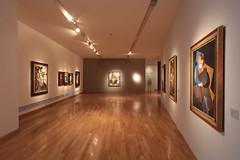 """Presentacin de prensa """"La exposicin pendiente y La conexin sur"""" (Museo Nacional de Bellas Artes) Tags: bellasartes museo gil carrillo museonacionaldebellasartes"""