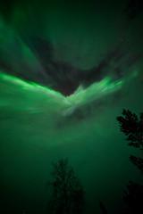 Finland 2016 (Marianne Zumbrunn) Tags: finland nikon finnland lappland corona aurora lapland f28 northernlights auroraborealis 2016 d610 northernlight 14mm samyang samyang14mm nikond610