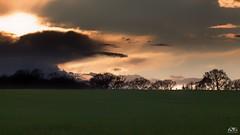 good night (stein.anthony) Tags: sunset tree nature clouds landscape sonnenuntergang sundown natur himmel wolken 1001nights landschaft bume