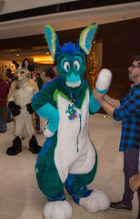 _DSC7956 (Acrufox) Tags: midwest furfest 2015 furry convention december hyatt regency ohare rosemont chicago illinois acrufox fursuit fursuiting mff2015