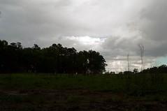 20160423-DSC_1198 (revbleech) Tags: weather unitedstates northcarolina springlake cumberlandcounty carverscreekstatepark