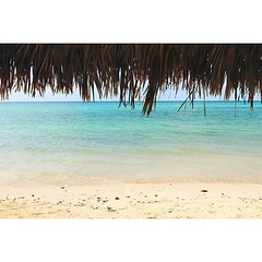 daysago #nofilter #cuba #tropical #cayococo... (polaroid android) Tags: trip summer holiday travelling tourism beach jj cuba playa tropical traveling visiting nofilter photooftheday picoftheday cayococo afterlight 10daysago vsco travelgram instagood instago instalike vscocam mytravelgram instatraveling igtravel uploaded:by=flickstagram instapassport instatravel instagram:photo=1091561040576252238264363329 instagram:venuename=cayococo instagram:venue=244946406