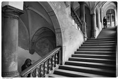 (Laszlo Horvath 1M+ views tx :)) Tags: nikon budapest steps f18 korridor 160 budapest100 nikond7100 sigma1835mmf18art