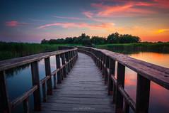 Tablas de Daimiel (Guille Molina) Tags: sky water clouds canon de real puente la madera agua ciudad cielo nubes tablas castilla mancha daimiel 550d