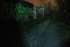 _DSF8714 (Luckybystander) Tags: night trash lowlight flash graffity snowfall flashlght