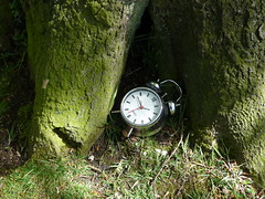 The White Rabbit from Alice in Wonderland has been here, late I expect. (Martellotower) Tags: white rabbit clock woodland time alice wonderland