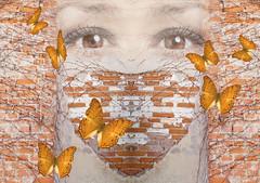 May is the month of love. (mariannakoutna) Tags: inspiration love wall photoshop heart symbol bricks explore czphoto walloffallenplaster cihlaplendoruda