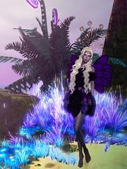 Gwyneth Lands in Otherworld (gwen.enchanted) Tags: ikon otherworld maitreya analogdog catwa lumae tayrensfantasyfashions simplyscha bliensonandmaitai