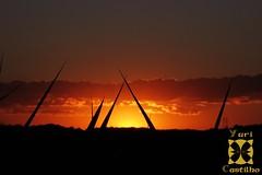 Nightfalls's Embrace (GeoWander) Tags: sunset sky silhouette clouds nightfall