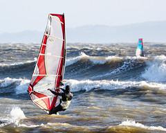PC311767-Edit (Brian Wadie Photographer) Tags: gulls oystercatcher windsurfing kiting em1 goodlight 14xtc avonbeach canon70300lis hemgistburyhead