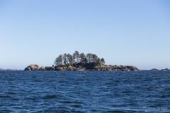 Island 2967 (Ursula in Aus) Tags: canada bc unesco tofino clayoquotsound