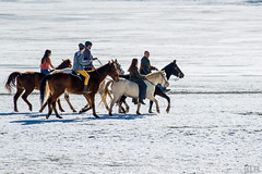 Taking the horses out on a frozen lake (flanger11) Tags: family winter horses lake snow us colorado lafayette unitedstates prairie rancher frozenlake gallop wintersun warmwinterday