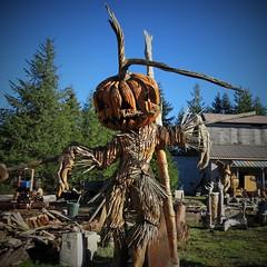 Pumpkinhead Scarecrow (rickele) Tags: pumpkin jackolantern scarecrow highway101 woodcarving roadsideamericana bandonoregon cooscounty usroute101