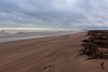 Blowing Sand,Sands of St Cyrus,St Cyrus National Nature Reserve_jan 16_682 (Alan Longmuir.) Tags: aberdeenshire grampian blowingsand stcyrus shiftingsands sandsofstcyrus stcyrusnationalnaturereserve