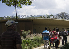 Medellin Botanical Gardens (colinmiller18) Tags: leaves butterfly palms botanicalgardens medellin lightanddark