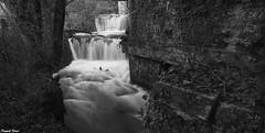 Guy et les Cascades sur la Furieuse de Champagny du Bas - Jura (francky25) Tags: guy les de la noir du jura cascades sur bas et blanc franchecomt champagny furieuse